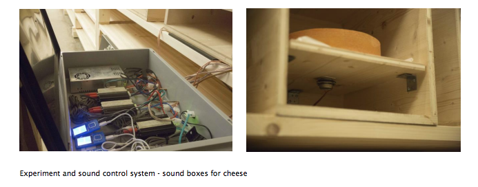 cheese in surround sound